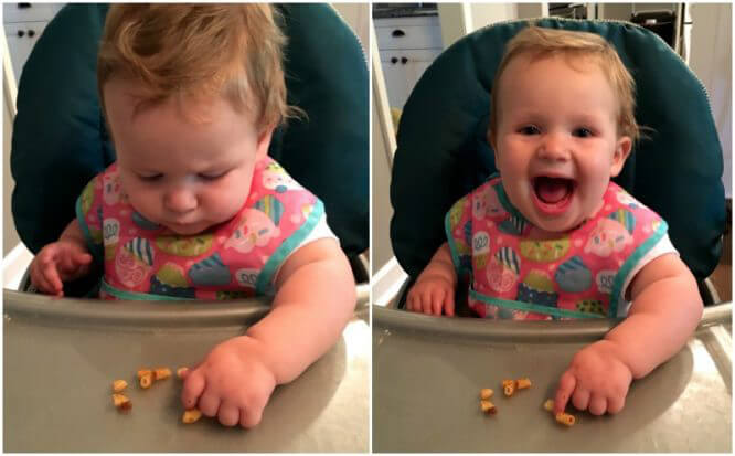 baby vs real food